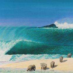 Elephant Surf