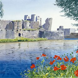 Caerphilly Castle II