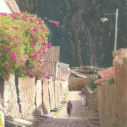 Calle Alta I