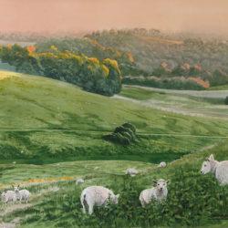 Sheep On Batemore