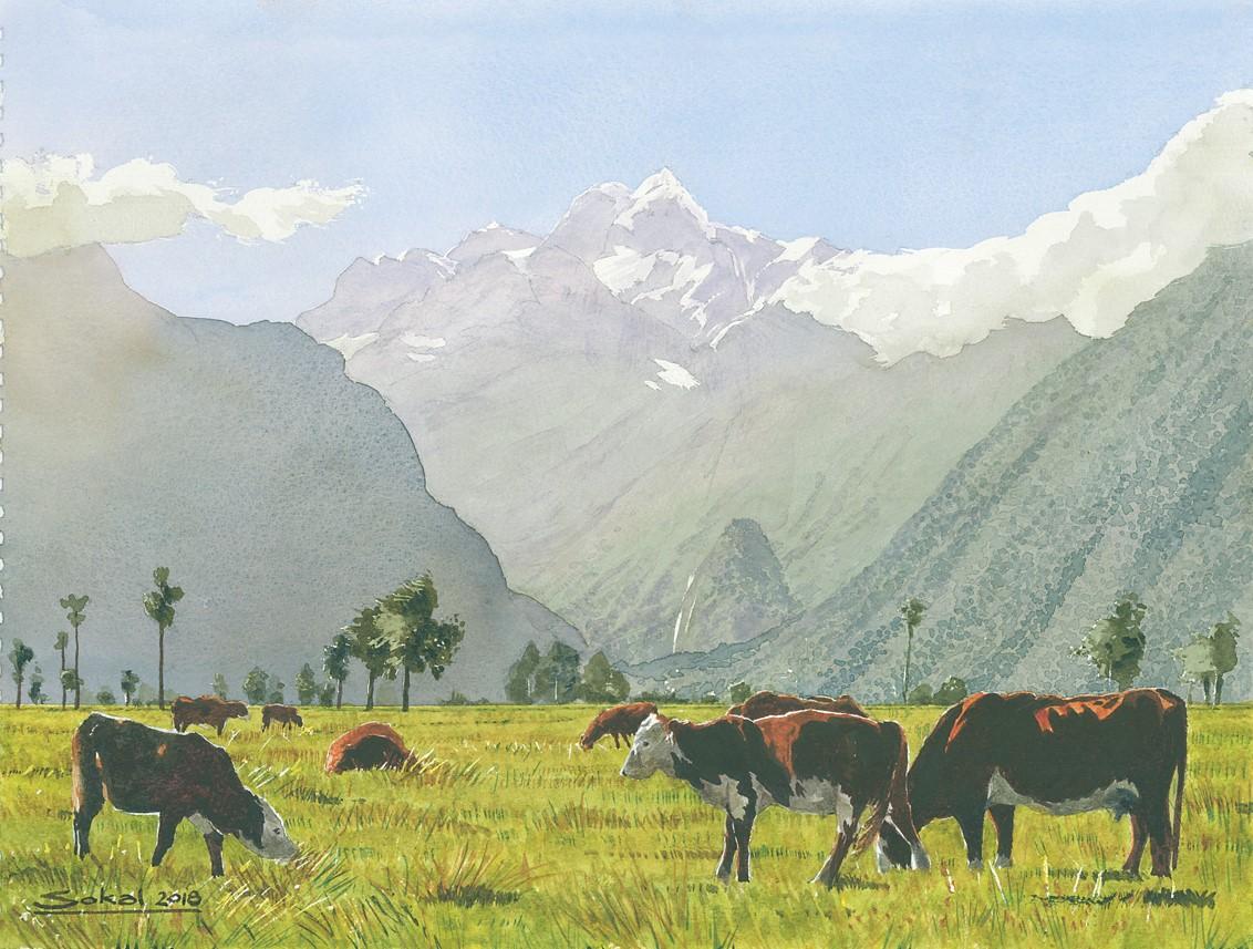 Towards Southern Alps NZ