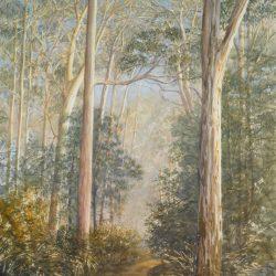 Eucalyptus Glade