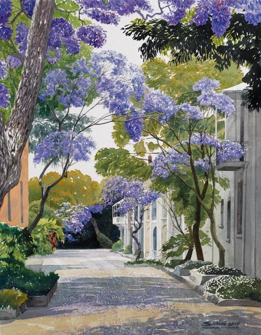 Jacaranda Alley (Sydney)